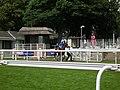 Horse leaving the paddock - geograph.org.uk - 2014022.jpg