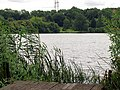Horsehill Lake near Burghfield - geograph.org.uk - 22985.jpg