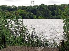 Burghfield lake