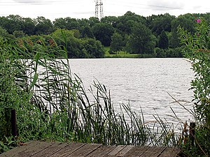 Burghfield - Horsehill Lake, Sheffield Bottom