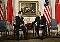 Hu Jintao Bush.jpg