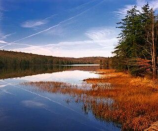 Shrewsbury Township, Sullivan County, Pennsylvania Township in Pennsylvania, United States