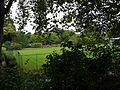 Hurlingham Club, September 2016 120.jpg