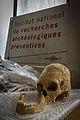 INRAP présentation fouilles Obernai 6000 ans occupation 24 octobre 2013 19.jpg