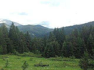 Mount Ilgaz National Park