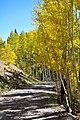Inner Basin Sept 25, 2012 (8033734445).jpg