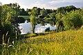 Irchelpark 2010-06-25 20-10-44.JPG