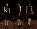 Iris Van Herpen composite - Paris Haute Couture Spring-Summer 2012.jpg