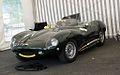 Jaguar d.jpg
