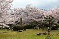 Japan 040416 Himeji Castle 007.jpg