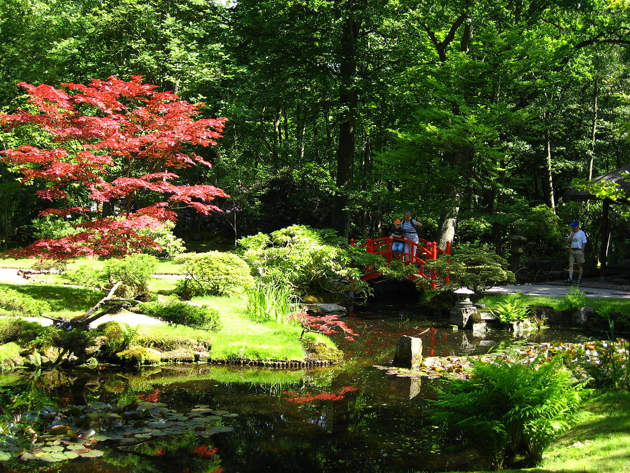file japanse tuin clingendael jpg wikipedia
