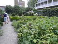 Jardin du Gouverneur - 010.jpg