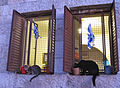 Jerusalem Double kitties (6035765627).jpg