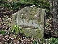 Jewish cemetery Zelechow IMGP3154.jpg