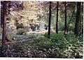 July Kandel - Mythos Black Forest Photography 1989 - panoramio.jpg