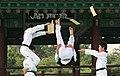 KOCIS Korea Taekwondo Namsan 30 (7628117020).jpg