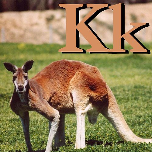 K is for Kangaroo.JPG