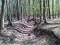 Kab-hegy - a természet ereje - panoramio.jpg