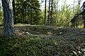 Kaltisbäcken - KMB - 16000300040563.jpg