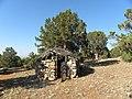 Karaardıç'ta kulübe - panoramio.jpg
