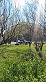 Karen Demirchyan Complex, Yerevan 05.jpg