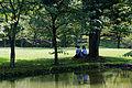 Karuizawa Taliesin10s3872.jpg