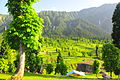 Kashmir Pakistan - Arang Kel 33.JPG