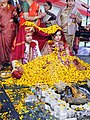 Kashmiri bride & groom.jpg