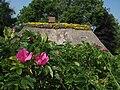 Kating rosenhaus gelb.JPG