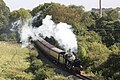 Kentford - 6960 express to Minehead.JPG