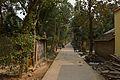 Kundupara Local Lane - Hijuli - Halalpur Krishnapur - Nadia 2016-01-17 8852.JPG