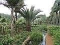 Kunming Botanical Garden - DSC03094.JPG