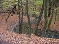 Kunratický les, Kunratický potok.jpg