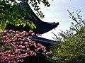 Kyoto To-ji Kondo 09.jpg