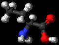 L-Butyrine-3D-balls.png