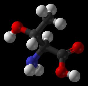Threonine - Image: L Threonine 3D balls