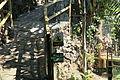La Palma - Breña Alta - Calle la Cuesta - Maroparque 07 ies.jpg