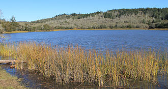 Lake Ilsanjo - The lake in 2013