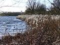 Lakeshore, Riverside Park - geograph.org.uk - 288922.jpg