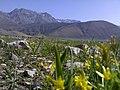 Lar from Canyon کوه های سودر از تنگه - panoramio.jpg