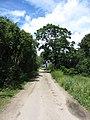 Lazdėnai 21400, Lithuania - panoramio.jpg