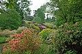 Leonardslee Gardens - colour in June (geograph 1899581).jpg