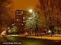 Liatoshinskiy str. at night - panoramio (2).jpg