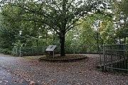 Lieferinger Kulturwanderweg - Tafel 25-2.jpg
