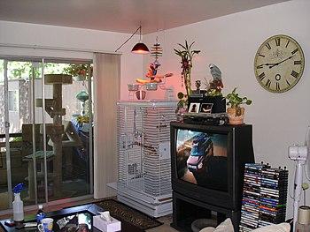 A per parrots cage in a living room. A model o...