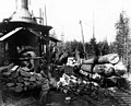 Loading logs onto railroad cars, McDougal and Biladeau Logging Co, Ravensdale (CURTIS 991).jpeg