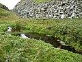 Lochan on Ailsa Craig - geograph.org.uk - 1444894.jpg
