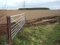 Looking towards Turton's Covert - geograph.org.uk - 1048079.jpg