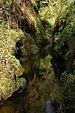 Lydford Gorge.jpg