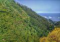 Madeira (28749656515).jpg